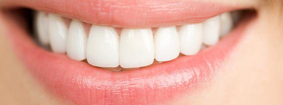 tandforsikring til tænder